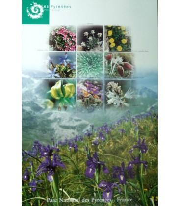 Fleurs du Parc national des Pyrénées
