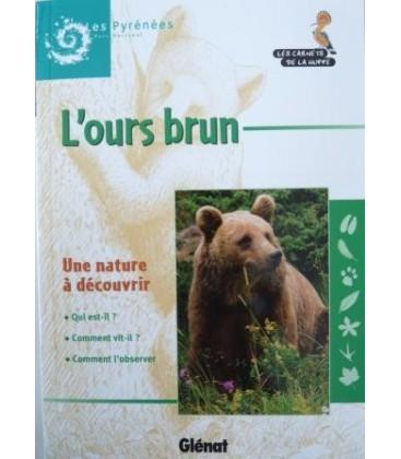 L'ours brun : les carnets de la Huppe